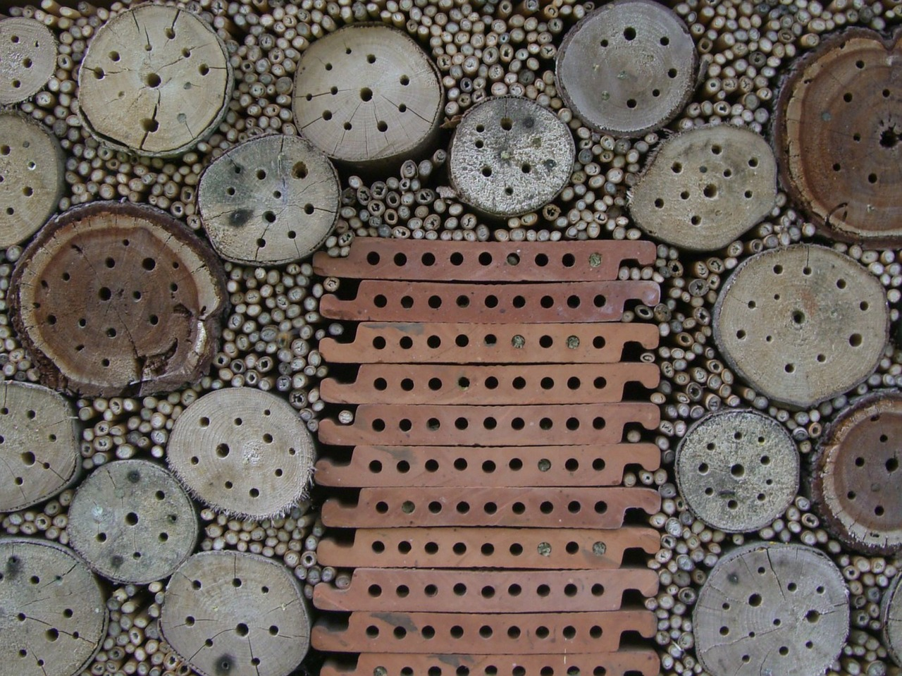 insect-hotel-341274_1280